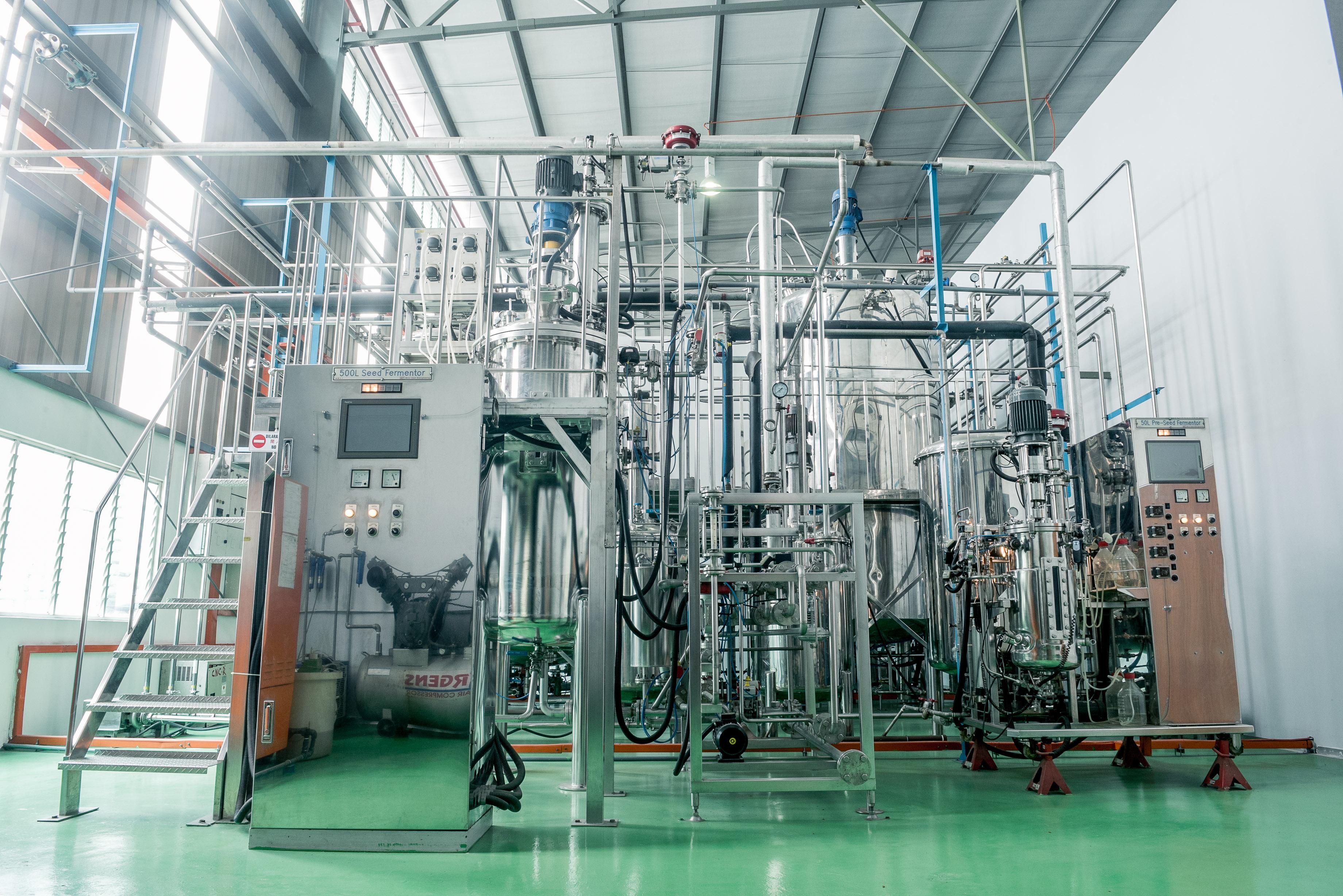 IBG Factory-100